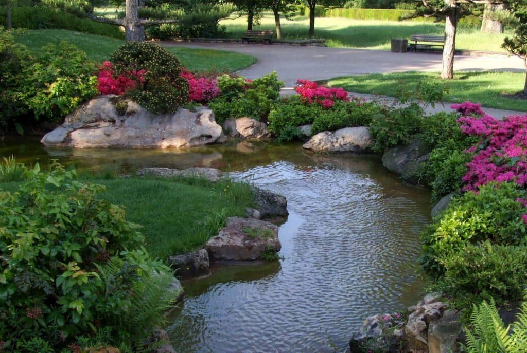 Beautiful garden pond