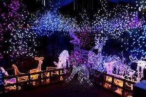 Outdoor Christmas lights decoration